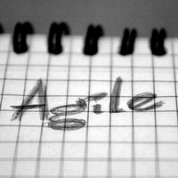 Agile Self-Organization: Band-Aid for a Broken Leg post image