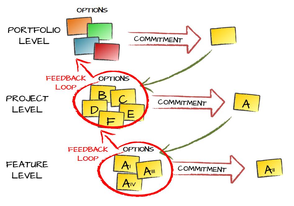 Portfolio Management Real Options